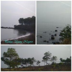 Pantai Ujungnegoro dari balik jendela KA Kaligung