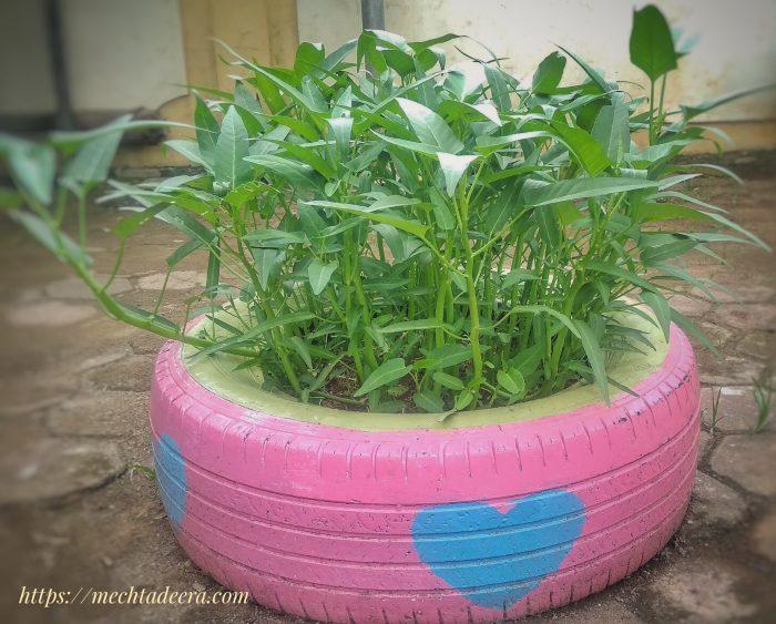 Ban bekas sebagai pot tanaman