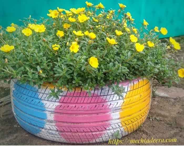 Bam bekas sebagai pot tanaman