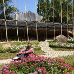 Wisata Taman Anggrek Guci