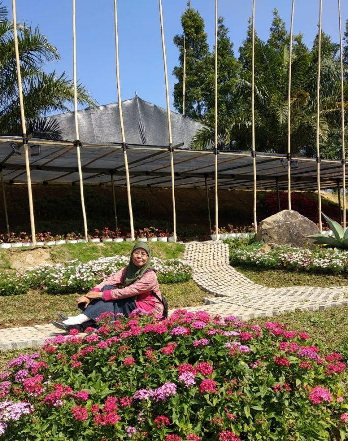 Menikmati Bunga Bunga Indah Di Wisata Taman Anggrek Guci