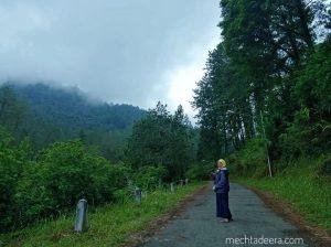 Jalan pagi di Wana Wisata Guci