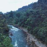 Hutan sumber air bersih