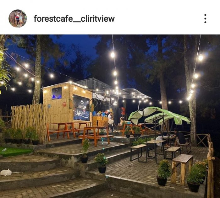 View Forest Cafe di malam hari