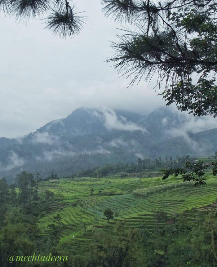 View dari Jl Curug Muncar Tlogopakis