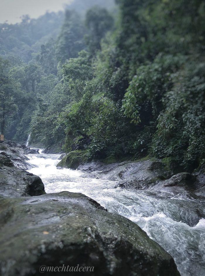 Sungai Welo Petungkriyono