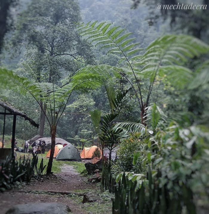Camping ground Welo Asri