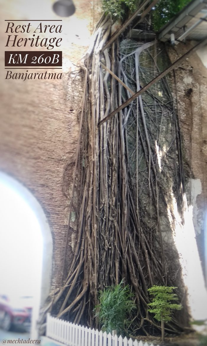 Spot akar TIP 260B Banjaratma