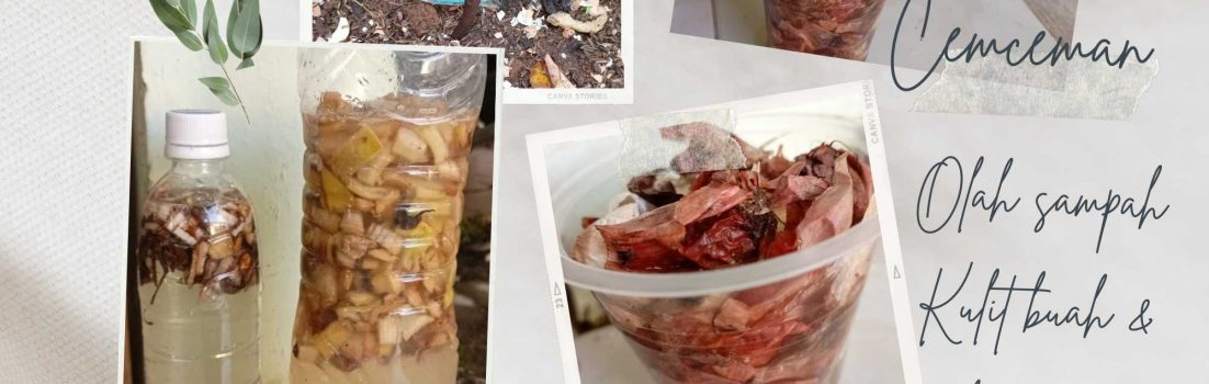 Pupuk organik dari limbah dapur