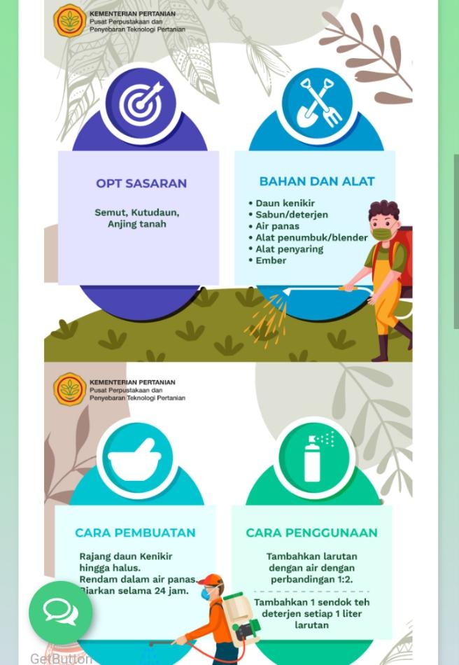 manfaat kenikir untuk pestisida nabati